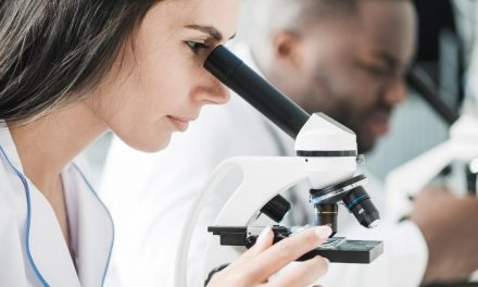 Marcas de microscópio: as 4 mais conhecidas no Brasil