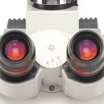 Ocular para microscópio: 3 tipos e suas diferenças [vídeo]
