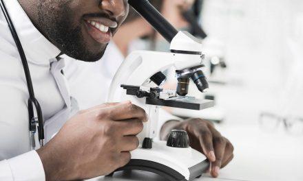 Qual a diferença entre o microscópio óptico e o microscópio digital ?