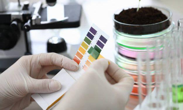 O que é pH, como medir e por que é importante?