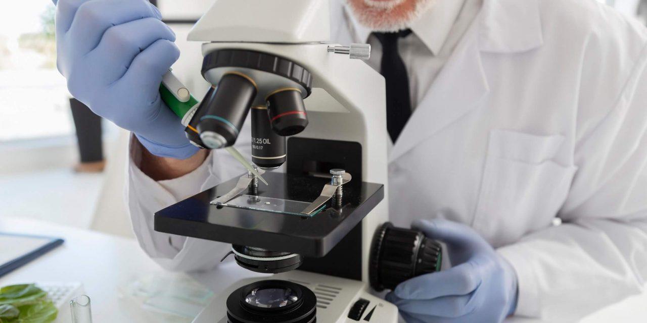 Quais são as partes de um microscópio?