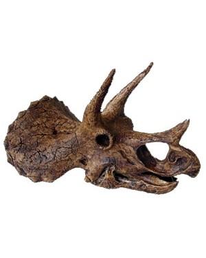 Crânio de Triceratops BR 18 Bios Réplicas