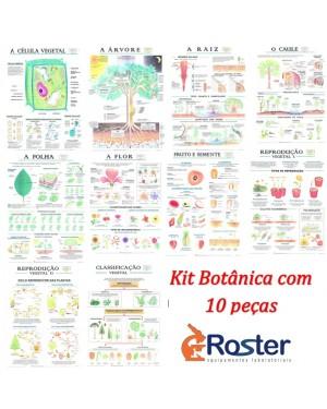 Kit de Mapas de Botânica com Moldura de Madeira 10 peças KMB-10M