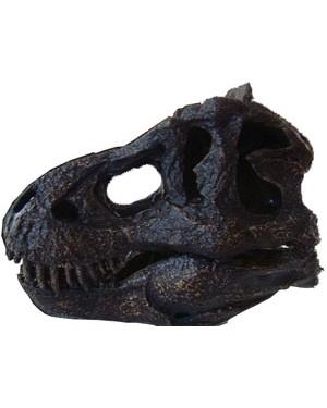 Miniatura de Crânio de Tyrannosaurus BR 35 Bios Réplicas