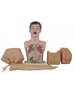 Modelo Prático de Enfermagem 5 Partes COL 1405 Coleman