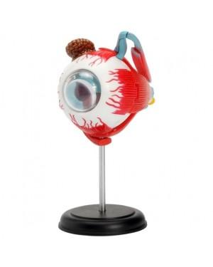 Globo Ocular com 32 Peças